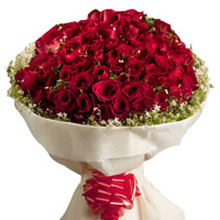 Happy Propose Day Offers