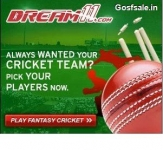 Dream11 Review : Review Of Dream11 : How to Play Fantasy Cricket on Dream11